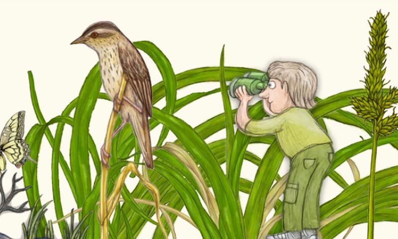 """""""Jaunieji gamtos reindžeriai"""" siūlo daugybė užduočių apie gamtą!"""