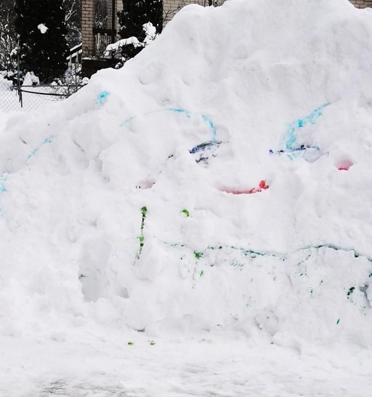 Namų laboratorija. Sniego pertekliaus įsisavinimas