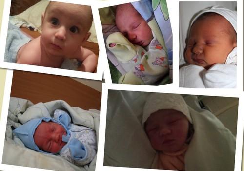 Konkurso apie mažylio pirmąsias gyvenimo valandas pabaiga: Bubchen dovana keliauja...
