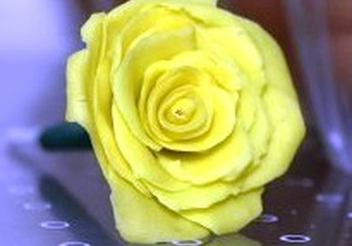 Plastilino rožė