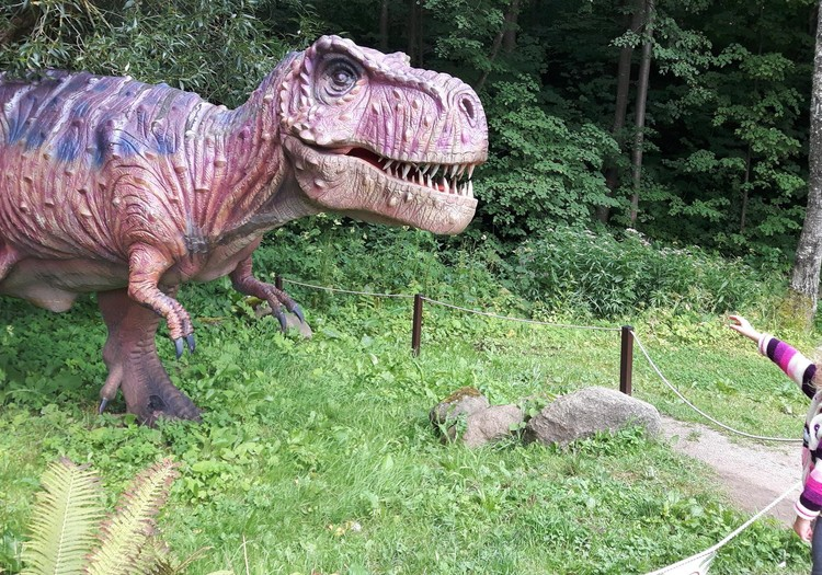Dino parkas Radailiuose