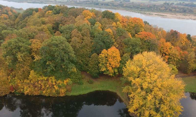 TOKIA MŪSŲ KASDIENYBĖ. Tas nepaprastas rudens grožis...