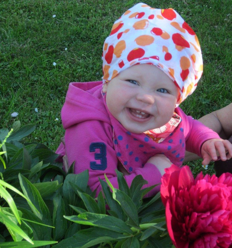 Augustės vasara sode