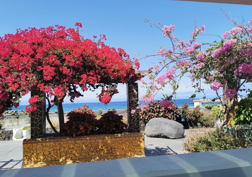 "Vasaros gidas: La Palma salos ""perliukai"""