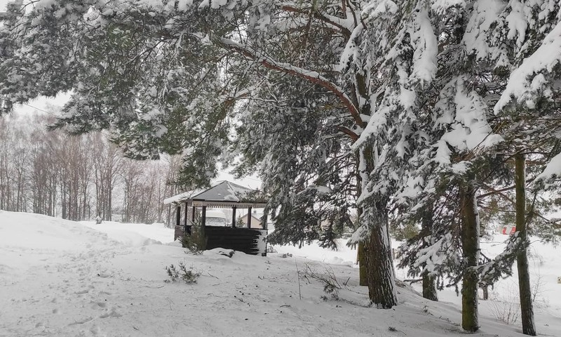 Sniego pusnys