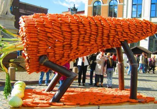 Rygoje - įspūdingas morkų festivalis ir morkų skulptūros