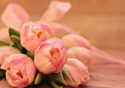 Visos gražiausios gėlės šiandien mums, mielos MOTERYS!