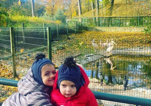 Šeimos laikas Rygos zoo parke