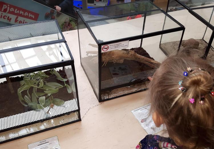 Augustės dienoraštis: egzotinių gyvūnų parodoje
