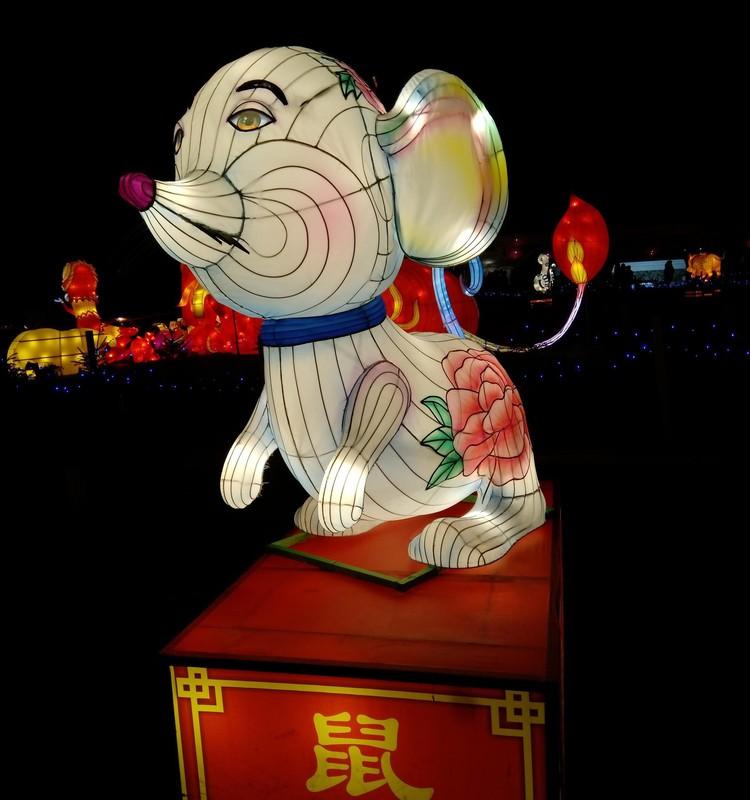 Kinijos žibintai Pakruojyje