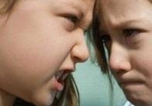 Kaip suvaldyti vaikučių pyktį ir agresiją