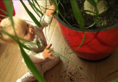 VIDEO: Super mažylės pirmieji žingsneliai ir traumos
