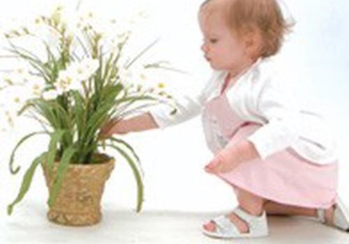 Augalai vaiko kambaryje