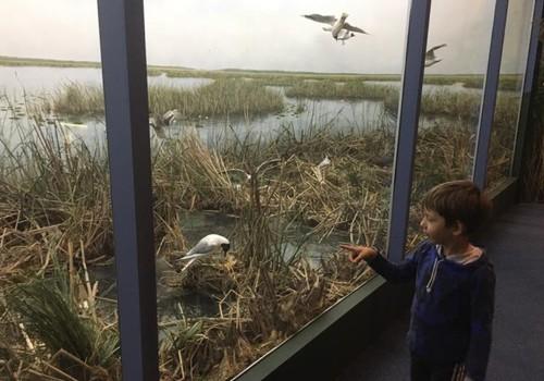 Vasaros gidas: Žuvinto biosferos rezervatas