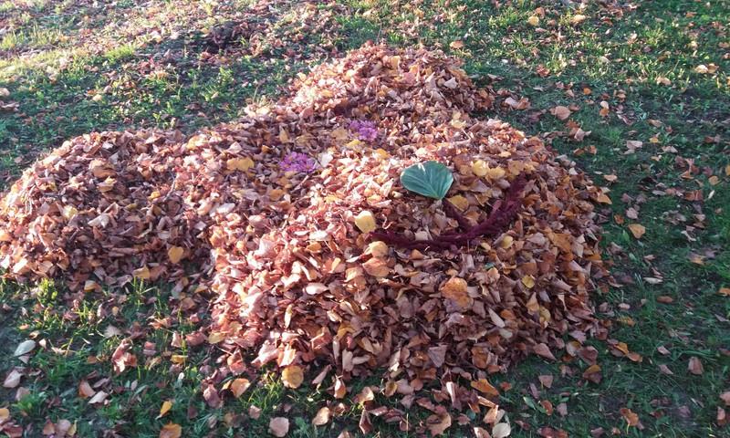 Rudens blogas: Kuo gali pavirsti rudeniniai lapai :)