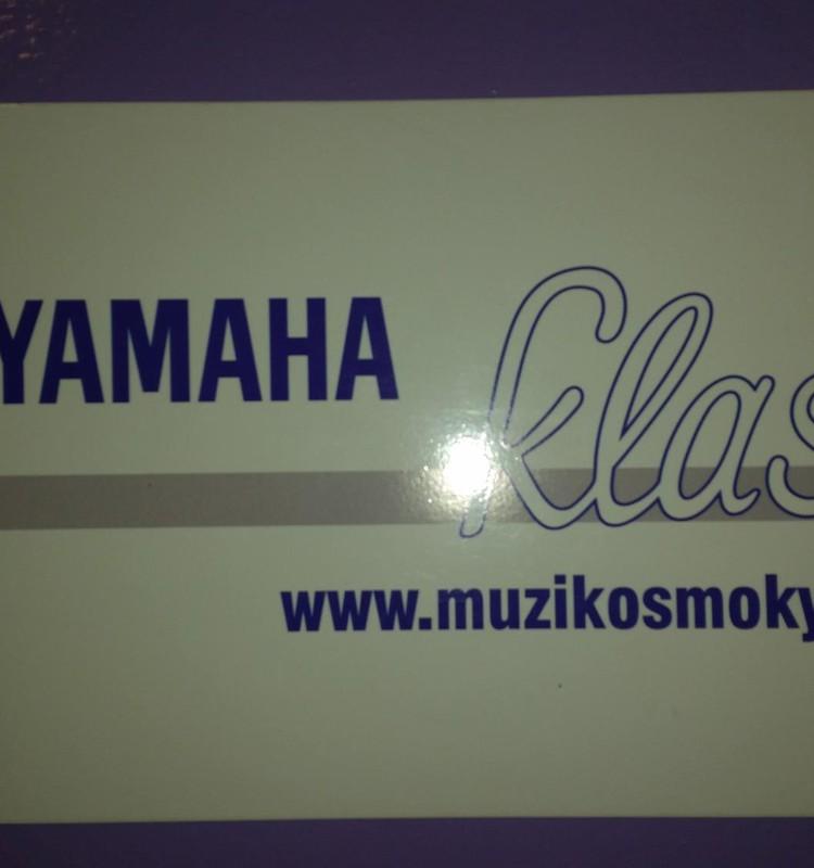 Saulėlydžio šeimos žiema : Yamahos muzikos mokykla