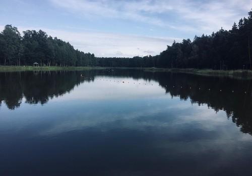 Vasaros gidas: Dailidės ežero pakrantės Alytuje