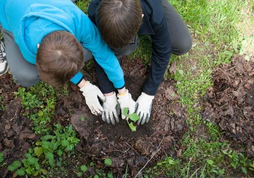 """""""Žalia pėda"""" kviečia kurti žaliąsias erdves vaikų ugdymui"""