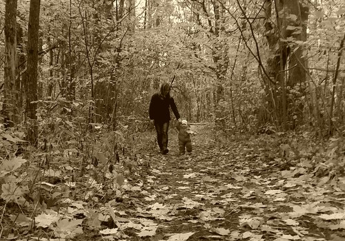Pasiutėlės Urtės dienoraštis: Helovynas, Vėlinės ir tiesiog gražus ruduo
