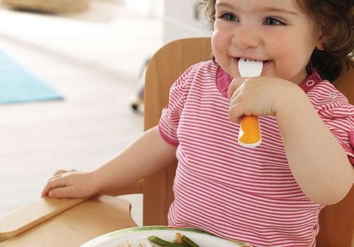 Mamos pataria: sveikų patiekalų receptų idėjos mažyliams (1)