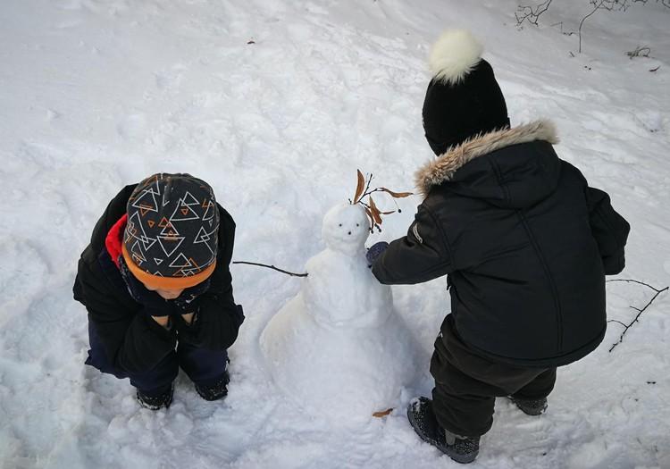 Sniegadienis