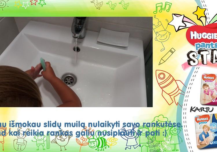 Plaunu rankutes