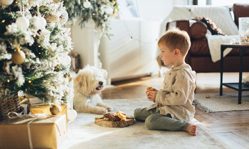 Kokios kalėdinės dovanos tiktų vaikams nuo gimimo iki ankstyvos paauglystės: idėjų sąrašas