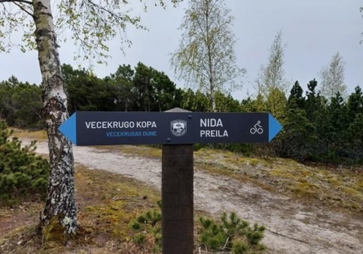 Vecekrugo kopa - aukščiausia Kuršių nerijos kopa (67,2 m)