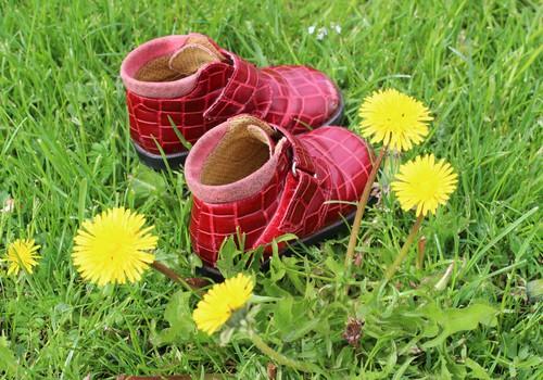 Žaliaraštis: mano batai buvo du, vienas dingo...