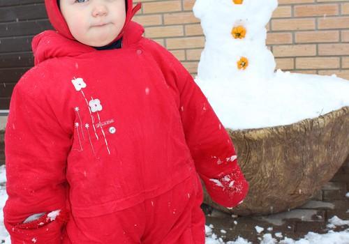 Sniego malonumai