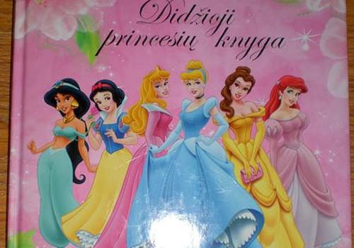 Didžioji princesių knyga