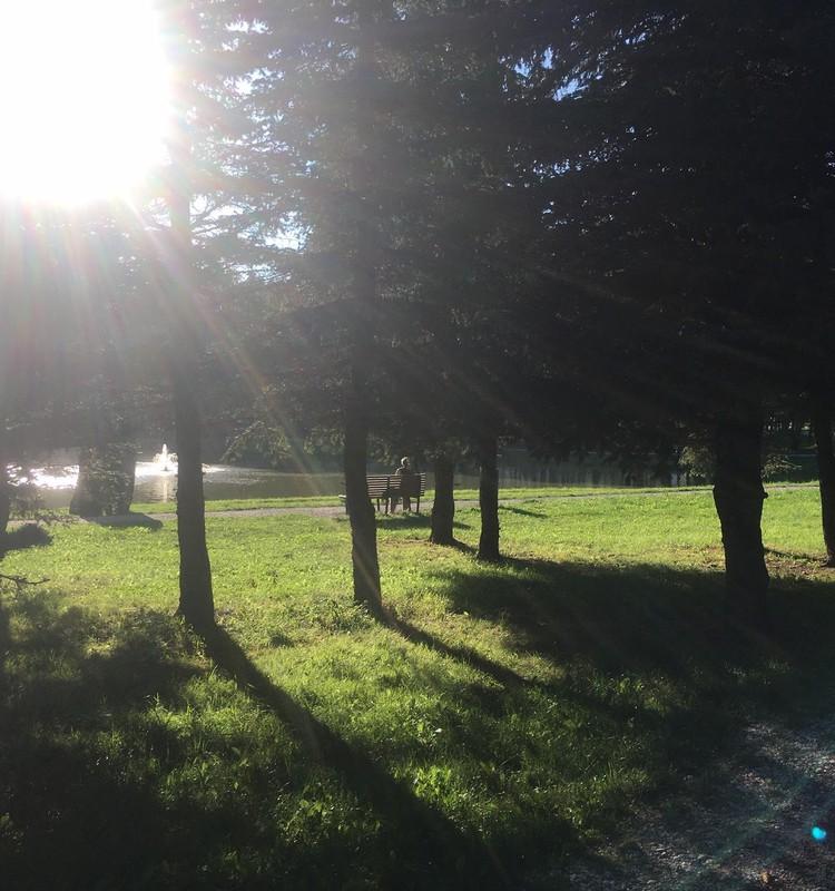 Vasaros gidas: Kalniečių parkas Kaune
