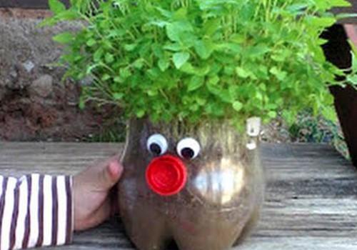 Pasidaryk pati: kaip linksmai auginti prieskonius?