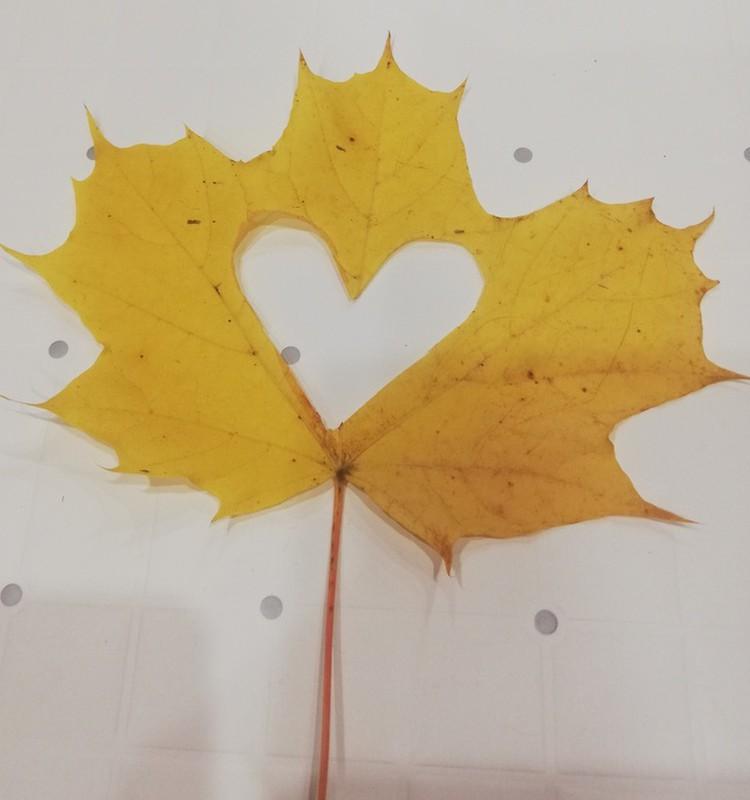 Tokia mūsų kasdienybė. Mes mylime rudenį