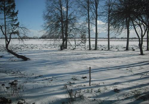 Pavasarines ziemos malonumai :)