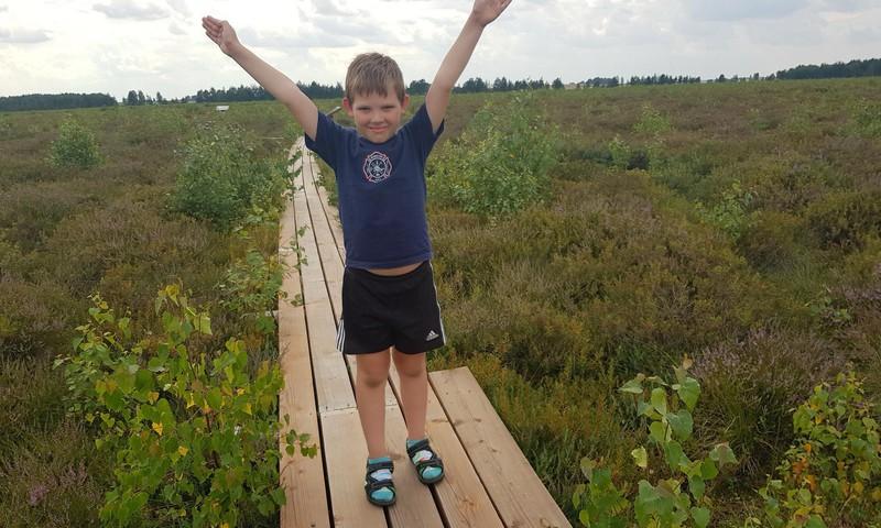 Vasaros gidas: gamtinis- pažintinis takas Amalvos pelkėje