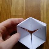 Gaunasi toks šešiakampis