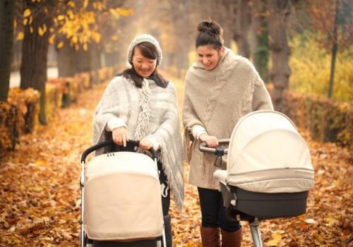 APKLAUSA: Kokį vežimėlį ir kaip išsirinkti? Dalinkimės patarimais!