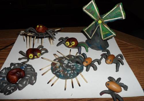 Mūsų gausioji voriukų šeimyna