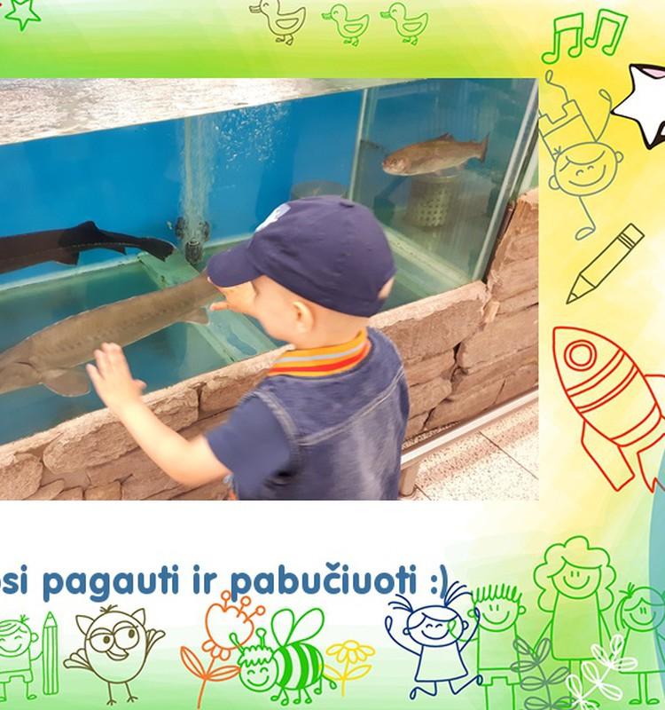 Pirmą kartą gyvos žuvys!