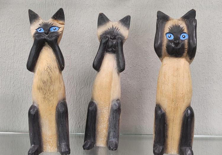 Nustebinęs katinų (ir ne tik) muziejus Šiauliuose