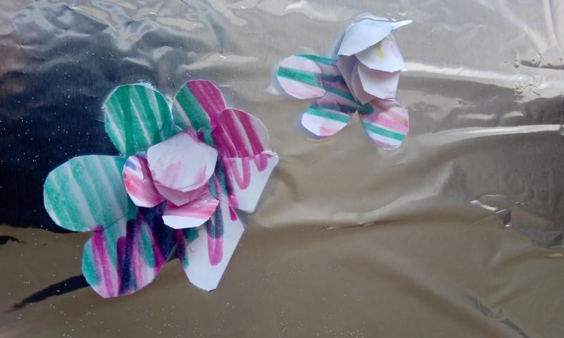 Vandenyje išsiskleidžiančios gėlės