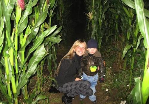 Klaidžiojimas po paslaptingą kukurūzų labirintą
