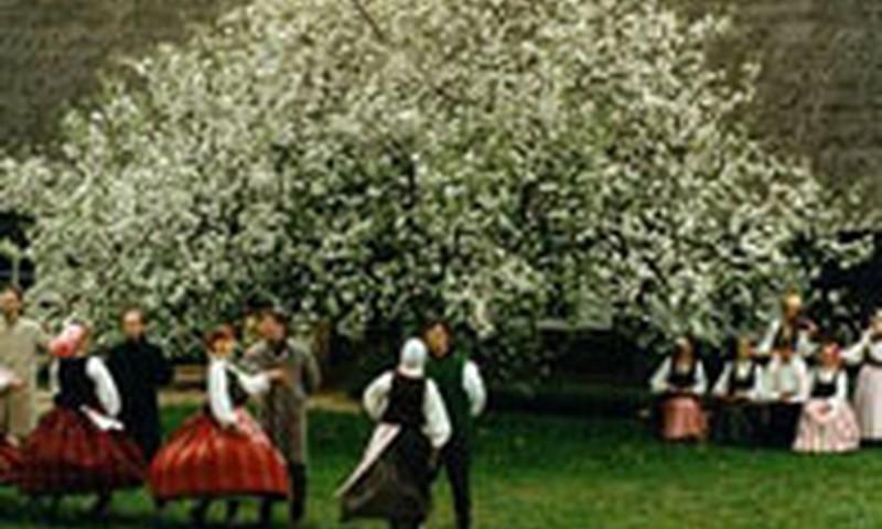 Tarptautinę šeimos dieną Rumšiškėse gausu atrakcijų