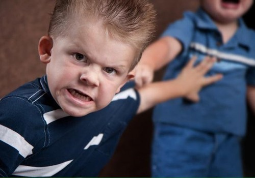 Darželyje kiti vaikai muša jūsiškį. Kaip elgtis?