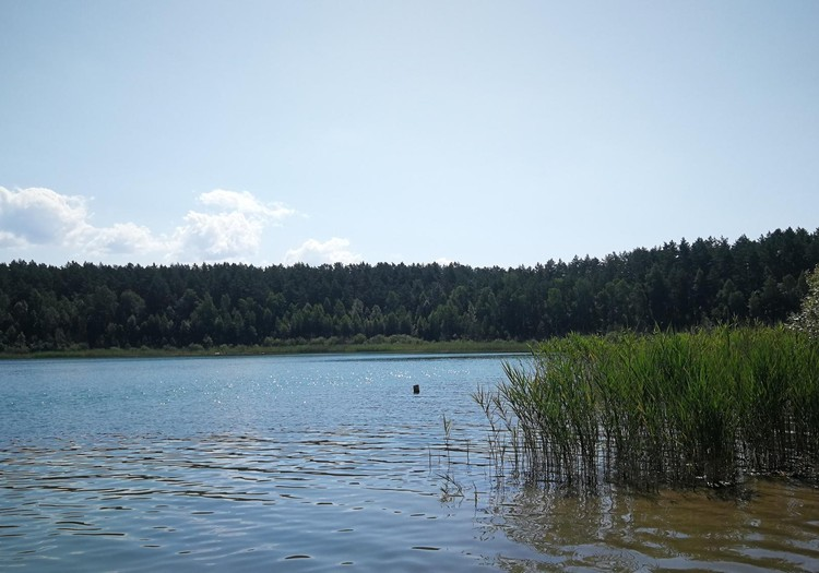 Vasaros gidas: Gėlos ežeras