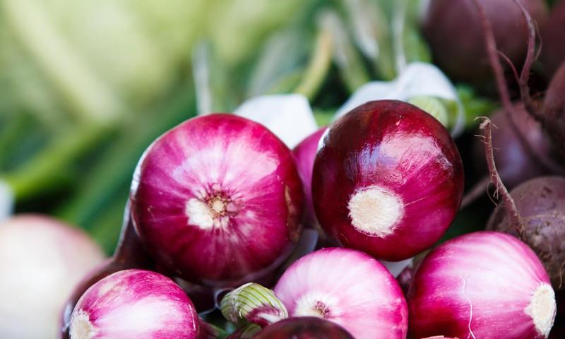 Kvercetinas – itin stiprus antikoksidantas: kodėl jis svarbus artėjant rudeniui