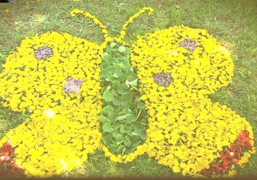 Pavasario blogas:  kasmetinis pienių menas.. :)