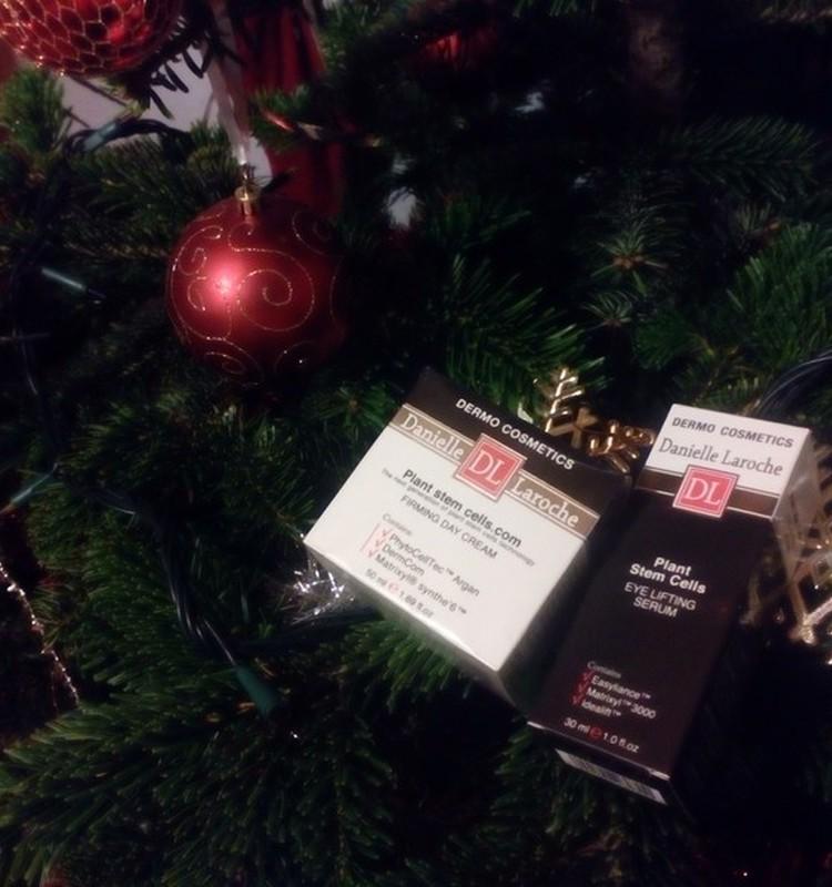 Kalėdų laukimas su DANNIELE LAROCHE pilnas stebuklingų akimirkų