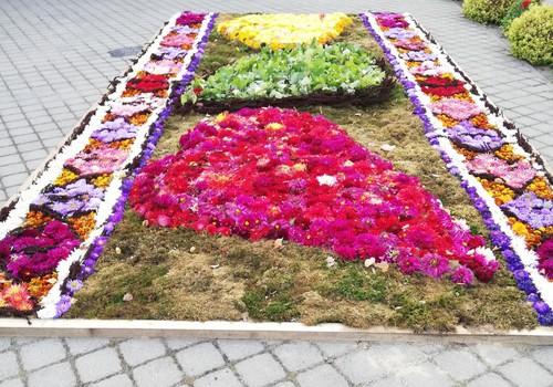 TOKIA MŪSŲ KASDIENYBĖ. Švėkšnos gėlių kilimai ir paminklas krepšiniui